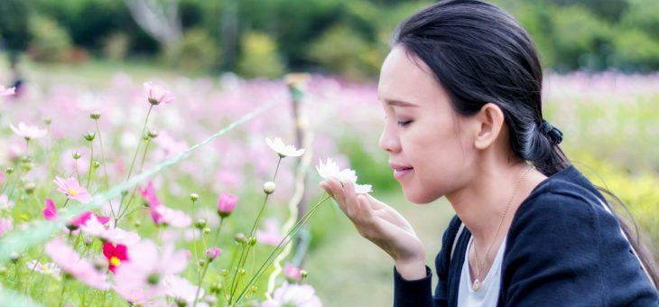 Consejos para quitar malos olores